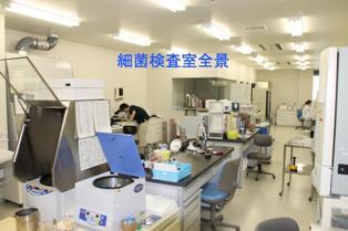 細菌検査室全景