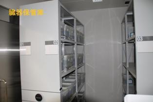 臓器保管室